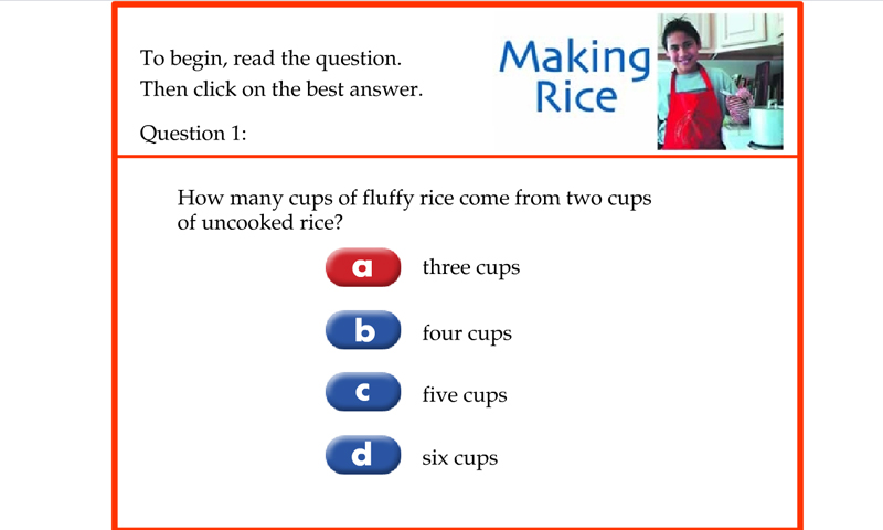 Making rice