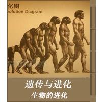 生物的进化