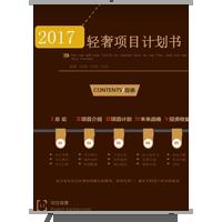 2017轻奢项目计划书商业商务通用模板