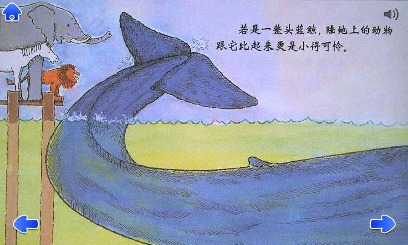 蓝鲸是最大的吗