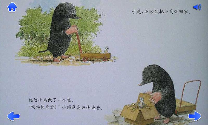 鼹鼠与小鸟