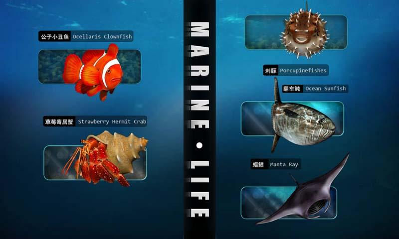 海洋生物详解(一)