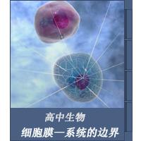 细胞膜—系统的边界