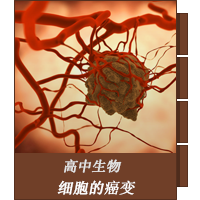 细胞的癌变