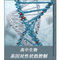 基因对性状的控制